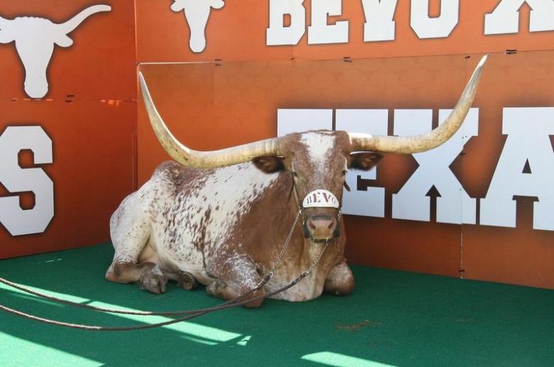 2015_Texas+-+Bevo+Mascot